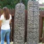 Asian Shield