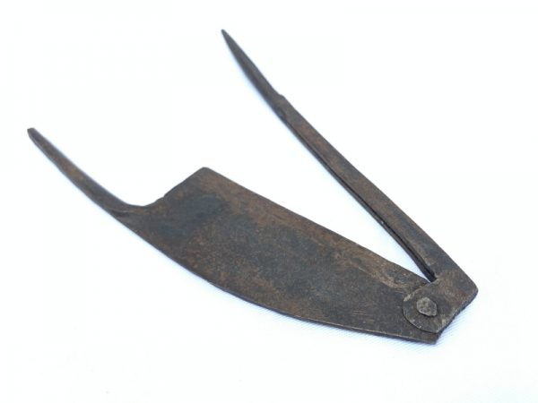 Betel Nut ornament