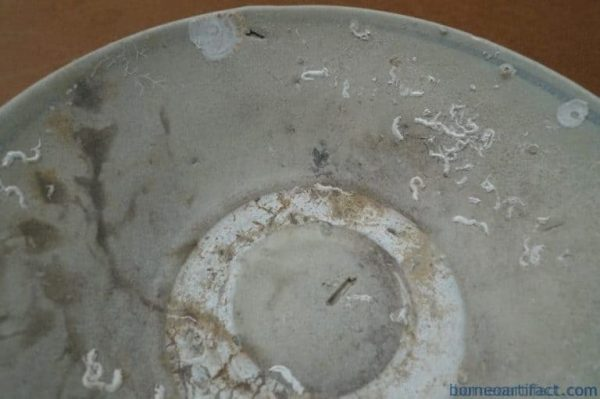 ancient bowl, MING DYNASTY (1368-1644) DISH / ancient bowl / PLATE Great Ming Underwater Artifact #1